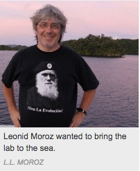 leonid_moroz; marine biology; genomics; research